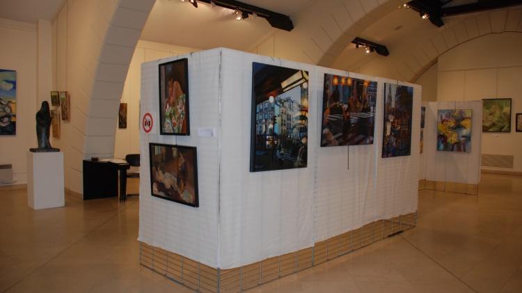 biennale-versaillaise-oeuvre-artiste-2014-16