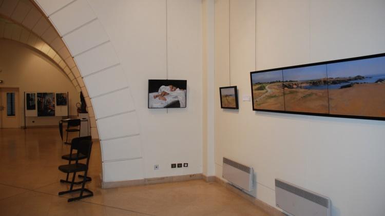 biennale-versaillaise-oeuvre-artiste-2014-22